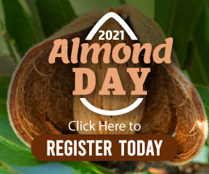 300×250-Almond-Day-Web-Ad